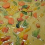 Gemüse-Kokosmilch-Soße